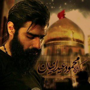 ساقی بازم خرابم / امشب مست شرابم - کربلایی محمود عیدانیان